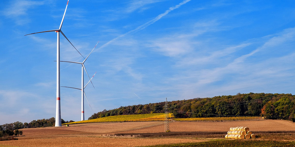 Wind turbines and yellow field